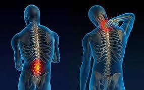 Como a sustentação vertical pode gera dores em seu corpo